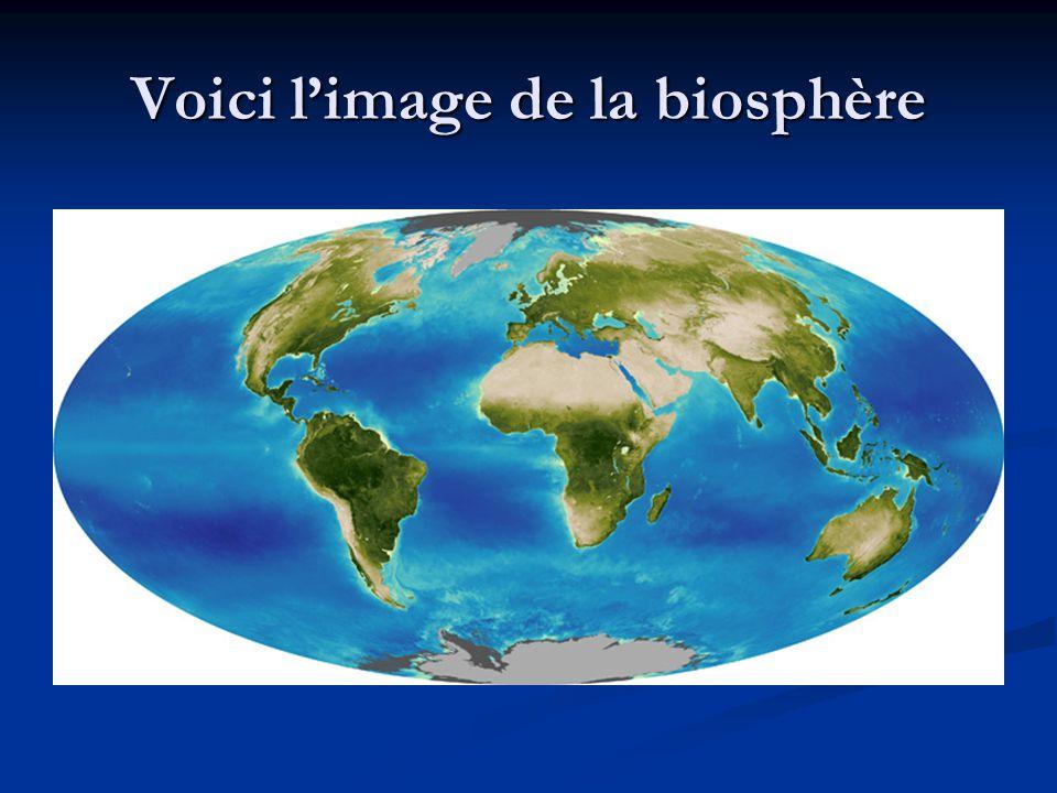Voici l'image de la biosphère