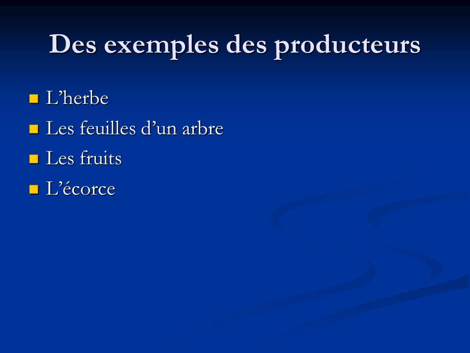 Des exemples des producteurs