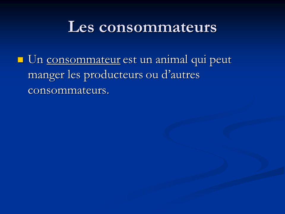 Les consommateurs Un consommateur est un animal qui peut manger les producteurs ou d'autres consommateurs.