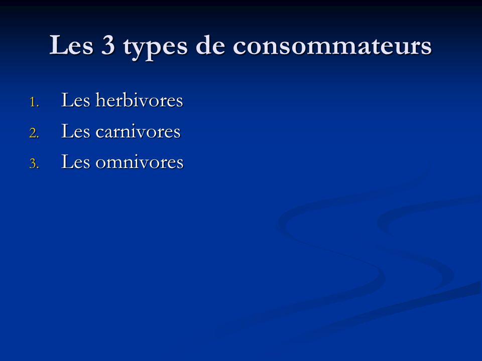 Les 3 types de consommateurs