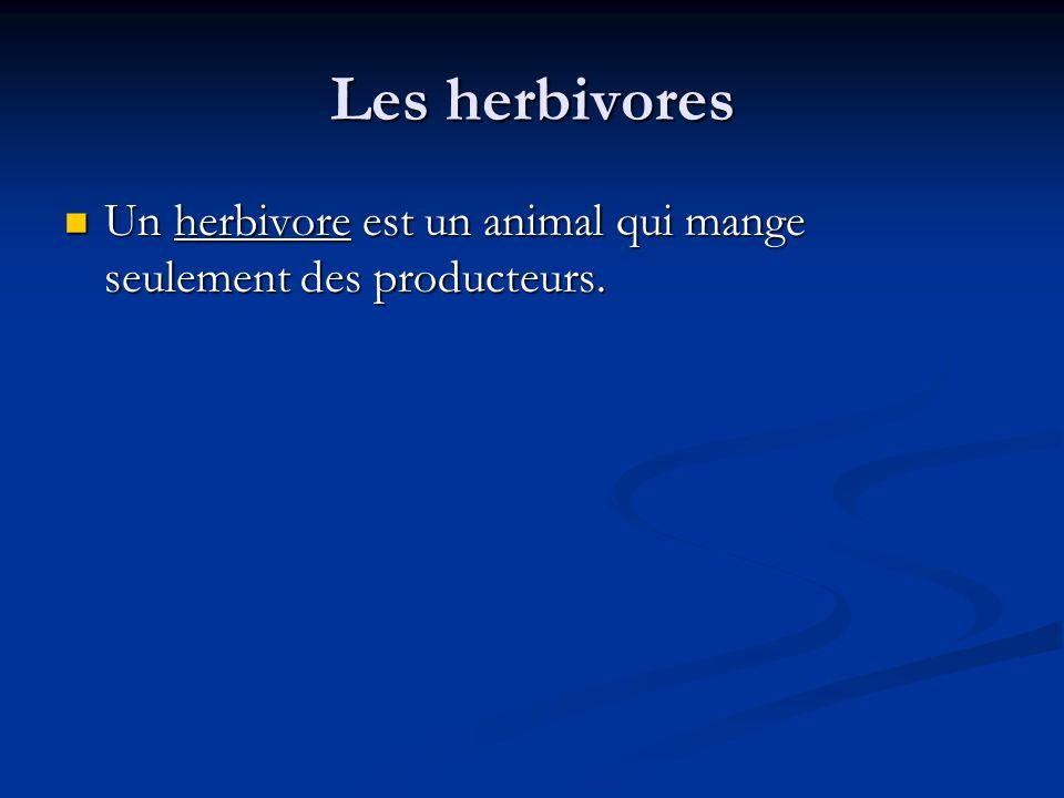 Les herbivores Un herbivore est un animal qui mange seulement des producteurs.