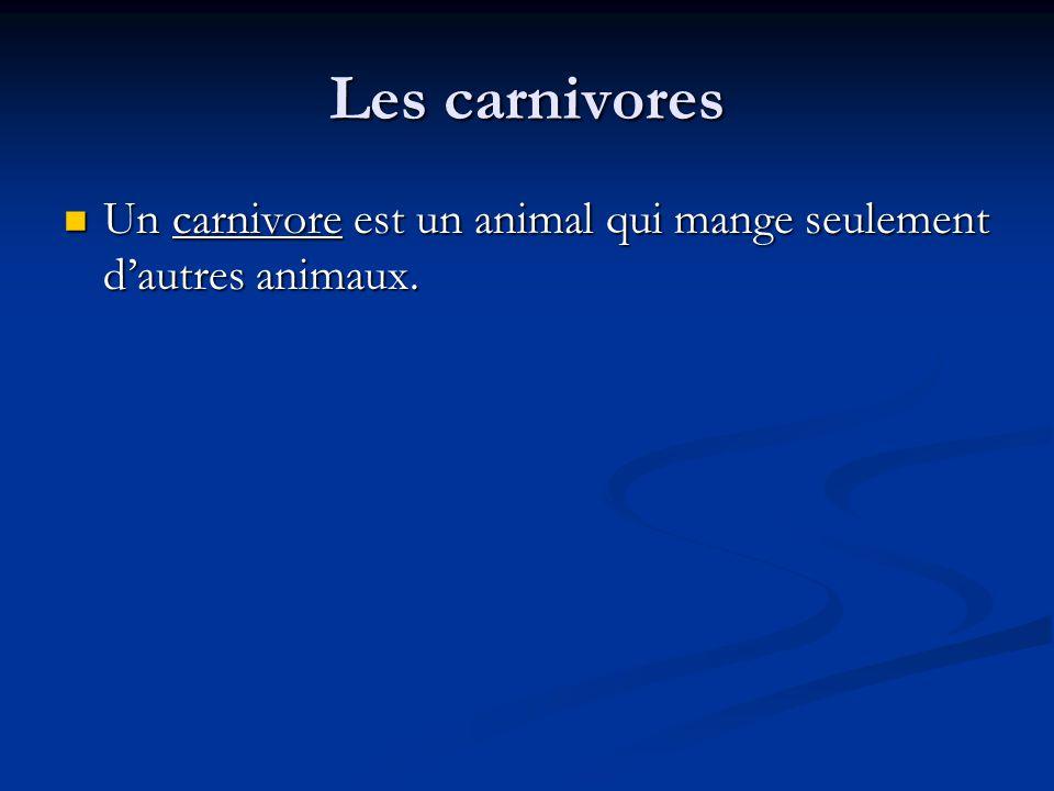 Les carnivores Un carnivore est un animal qui mange seulement d'autres animaux.