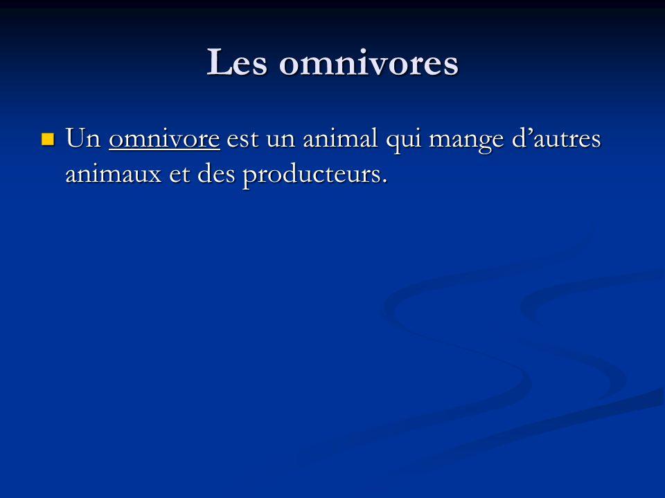 Les omnivores Un omnivore est un animal qui mange d'autres animaux et des producteurs.
