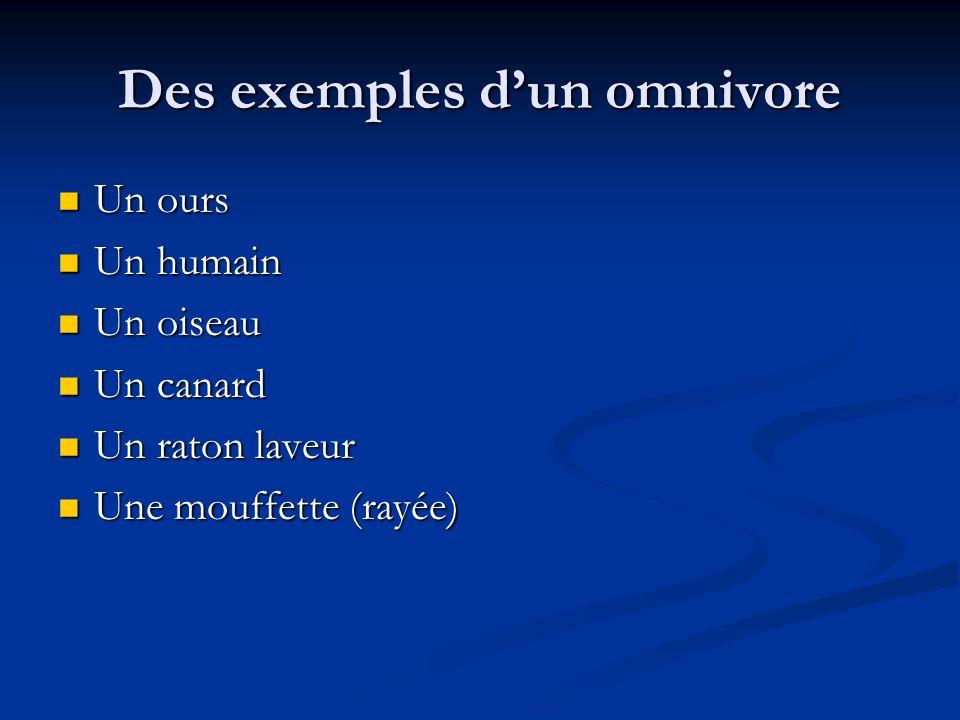 Des exemples d'un omnivore