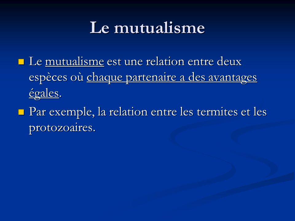 Le mutualisme Le mutualisme est une relation entre deux espèces où chaque partenaire a des avantages égales.