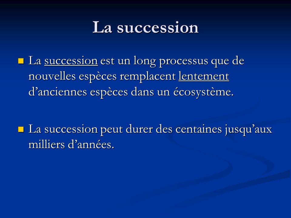 La succession La succession est un long processus que de nouvelles espèces remplacent lentement d'anciennes espèces dans un écosystème.