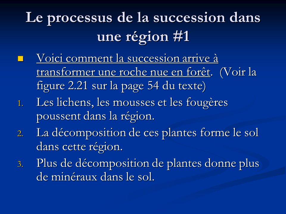 Le processus de la succession dans une région #1