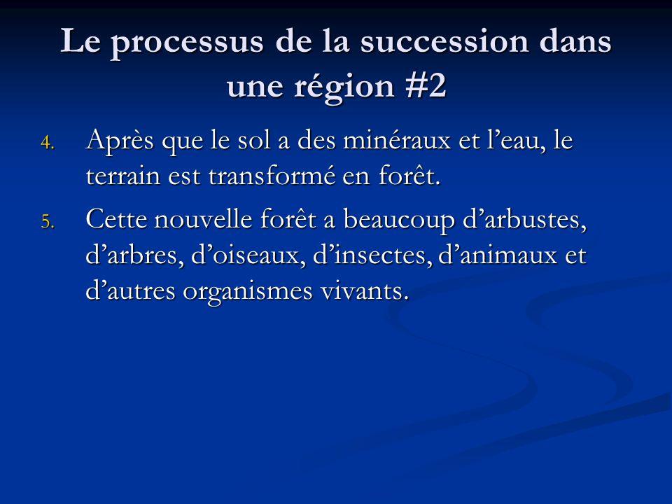 Le processus de la succession dans une région #2