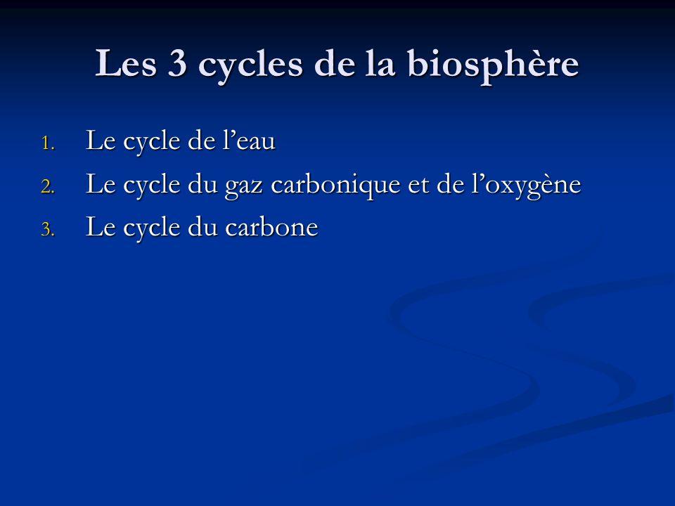 Les 3 cycles de la biosphère
