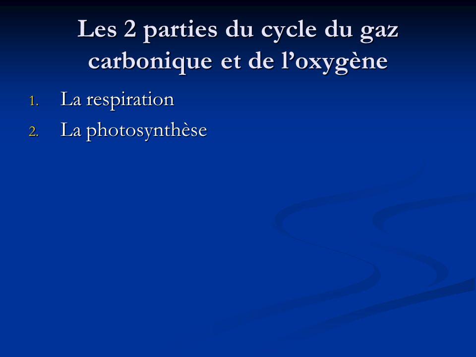 Les 2 parties du cycle du gaz carbonique et de l'oxygène