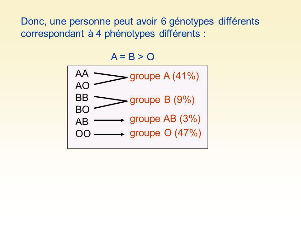 Donc, une personne peut avoir 6 génotypes différents correspondant à 4 phénotypes différents :