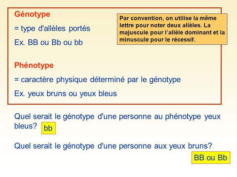 = caractère physique déterminé par le génotype