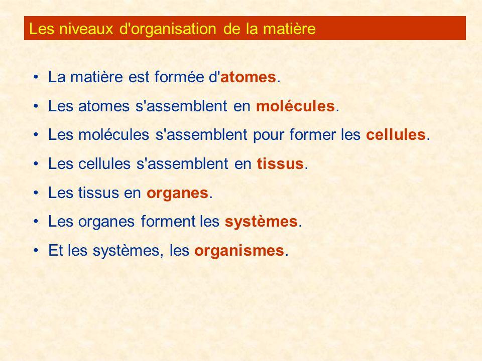 Les niveaux d organisation de la matière