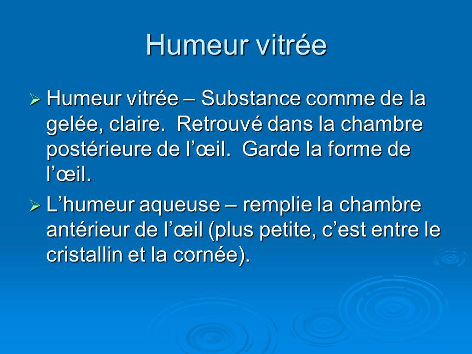 Humeur vitrée Humeur vitrée – Substance comme de la gelée, claire. Retrouvé dans la chambre postérieure de l'œil. Garde la forme de l'œil.