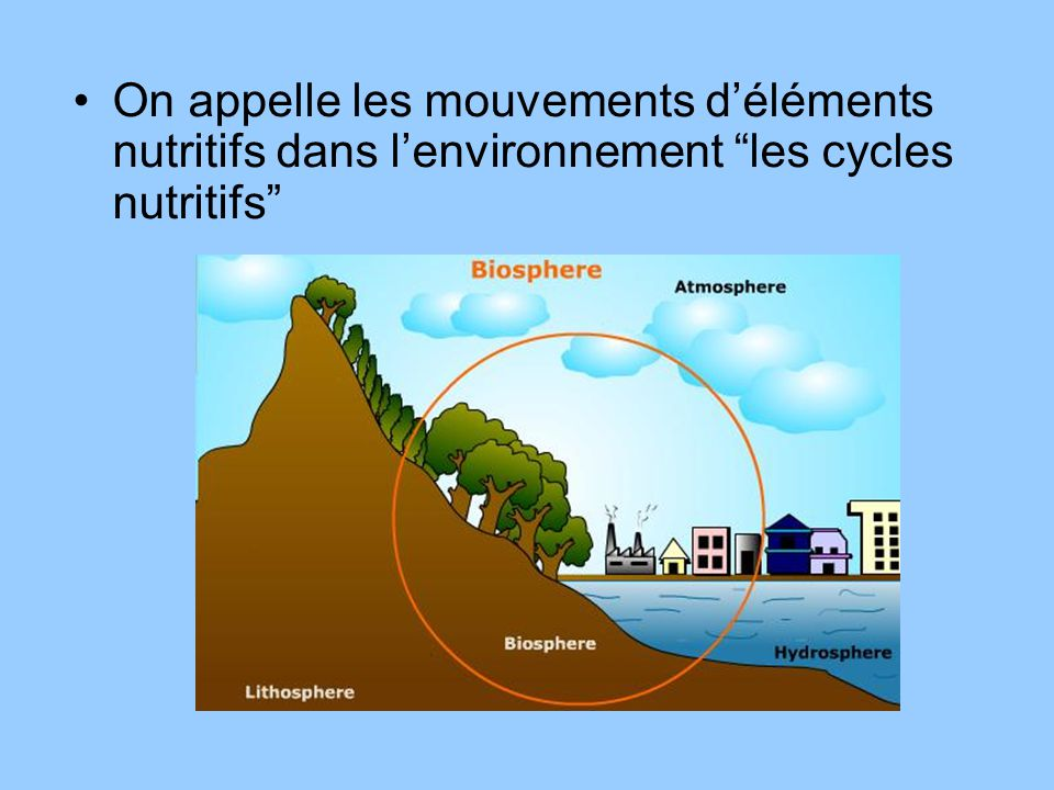 On appelle les mouvements d'éléments nutritifs dans l'environnement les cycles nutritifs