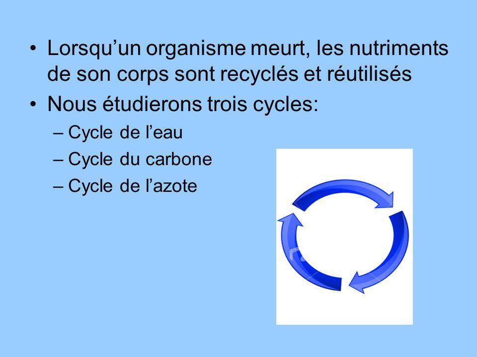 Nous étudierons trois cycles:
