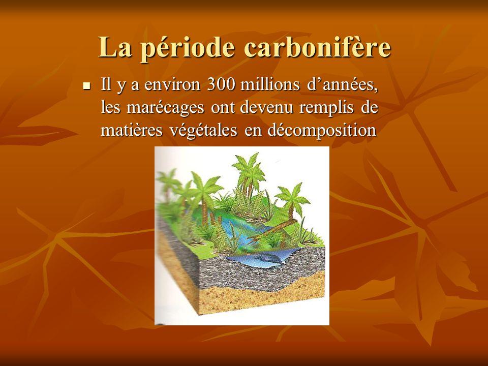 La période carbonifère