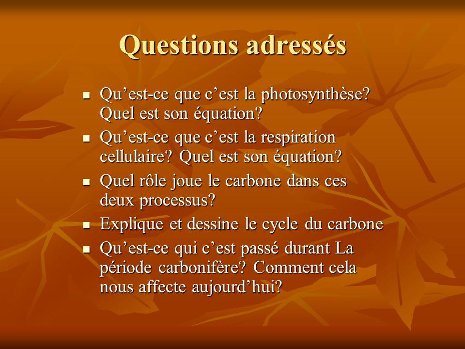 Questions adressés Qu'est-ce que c'est la photosynthèse Quel est son équation