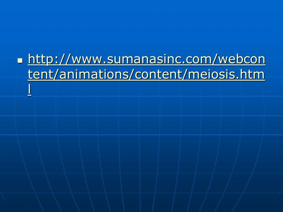 http://www.sumanasinc.com/webcontent/animations/content/meiosis.html