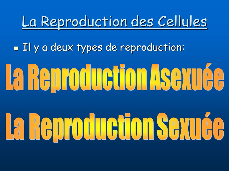 La Reproduction des Cellules