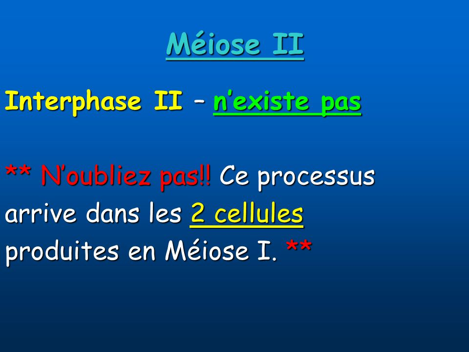 Méiose II Interphase II – n'existe pas ** N'oubliez pas!! Ce processus