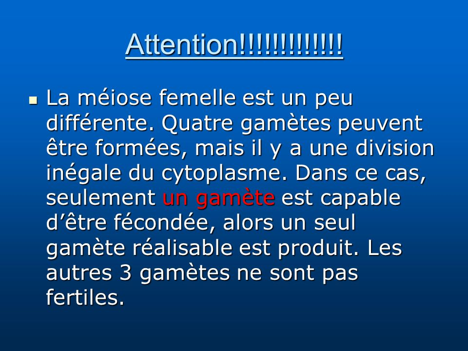 Attention!!!!!!!!!!!!!