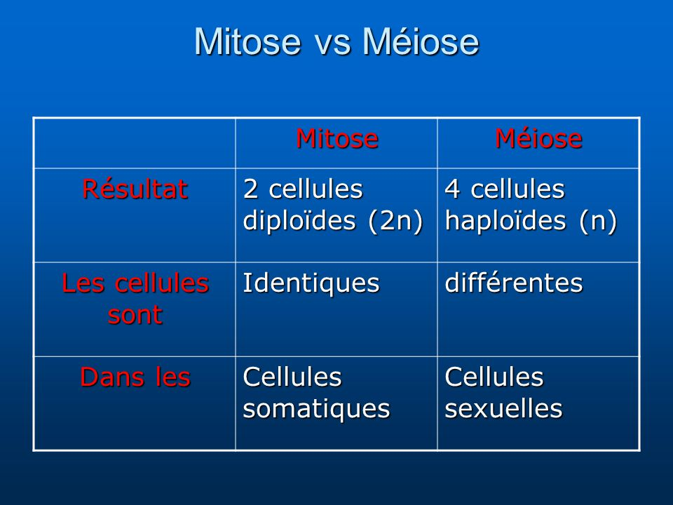 Mitose vs Méiose Mitose Méiose Résultat 2 cellules diploïdes (2n)