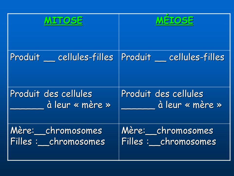 MITOSE MÉIOSE. Produit __ cellules-filles.
