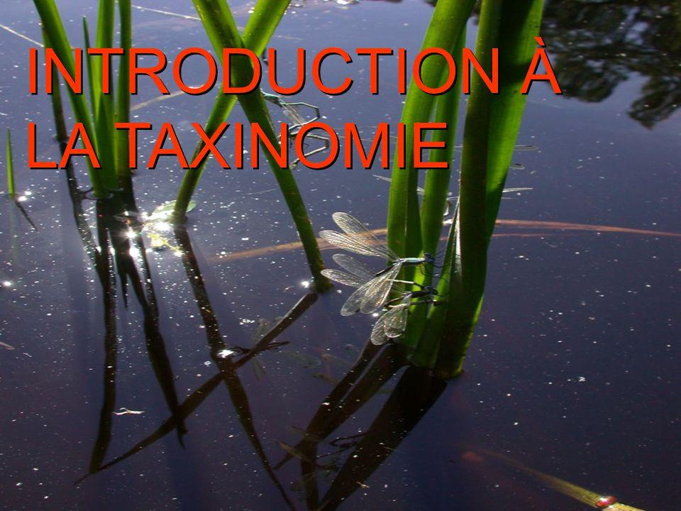 INTRODUCTION À LA TAXINOMIE