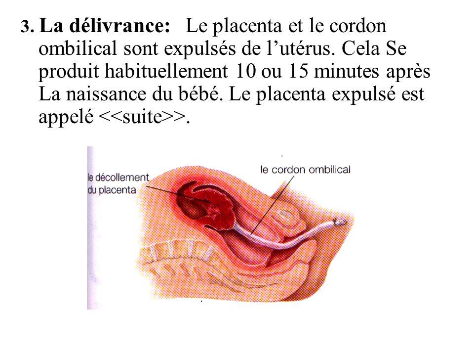 3. La délivrance: Le placenta et le cordon ombilical sont expulsés de l'utérus.
