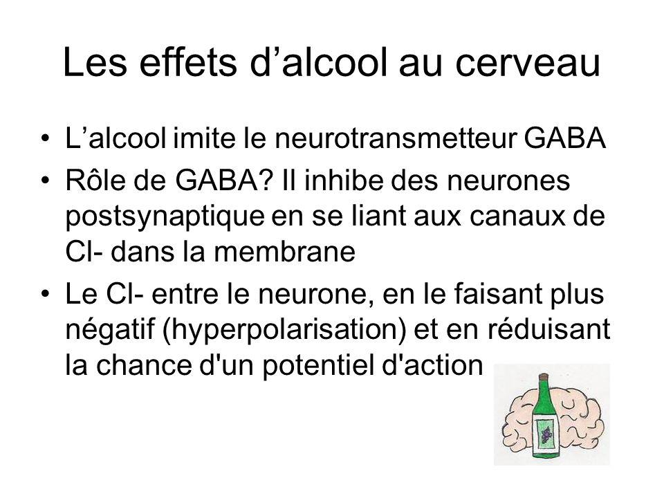 Les effets d'alcool au cerveau