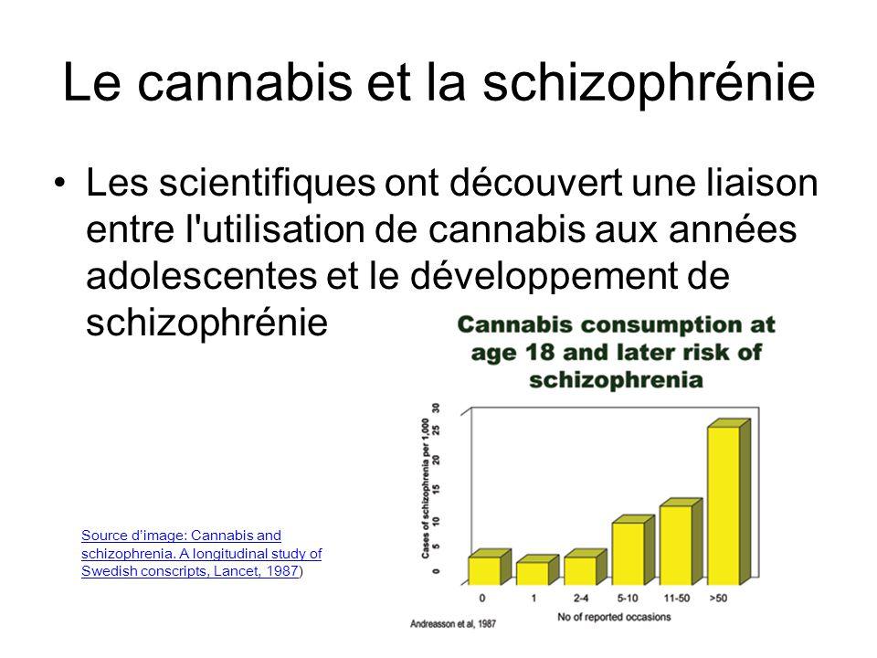 Le cannabis et la schizophrénie
