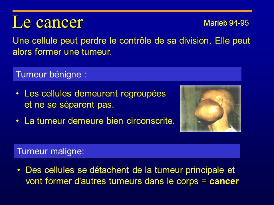 Le cancer Marieb 94-95. Une cellule peut perdre le contrôle de sa division. Elle peut alors former une tumeur.