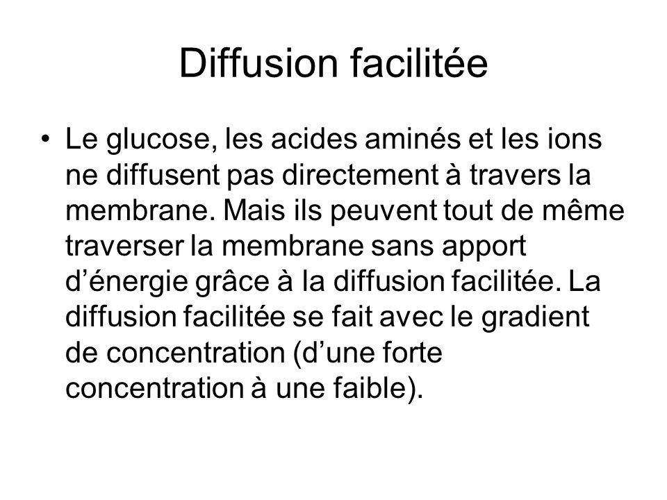 Diffusion facilitée