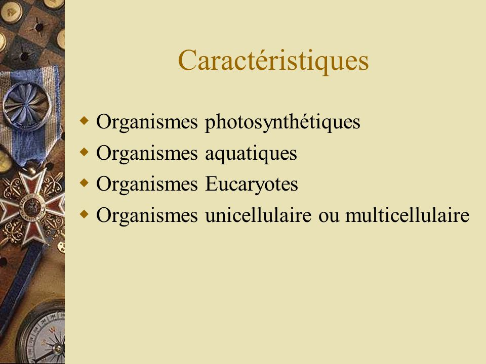 Caractéristiques Organismes photosynthétiques Organismes aquatiques