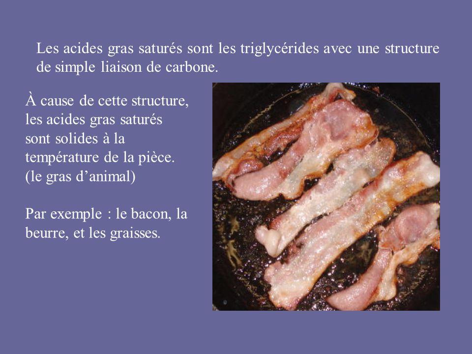 Les acides gras saturés sont les triglycérides avec une structure de simple liaison de carbone.
