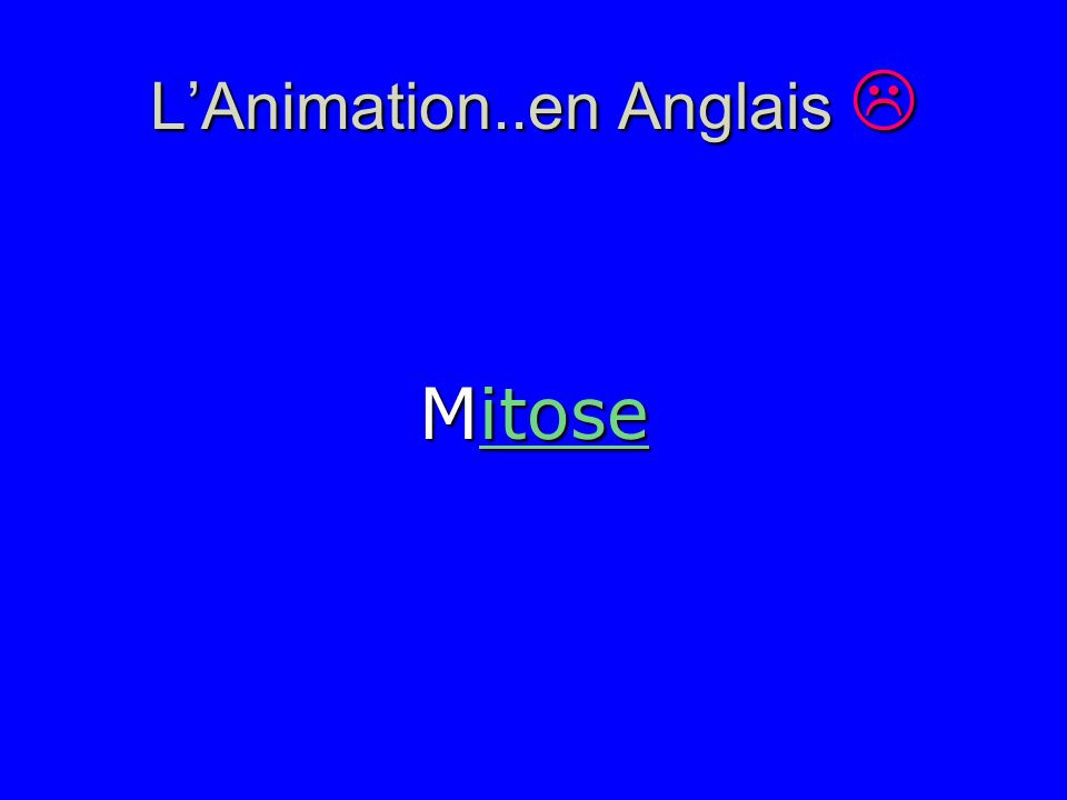 L'Animation..en Anglais 
