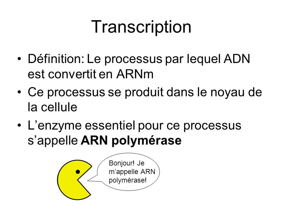 Transcription Définition: Le processus par lequel ADN est convertit en ARNm. Ce processus se produit dans le noyau de la cellule.