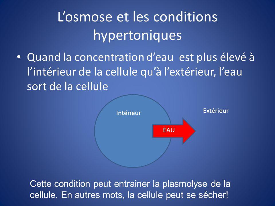 L'osmose et les conditions hypertoniques