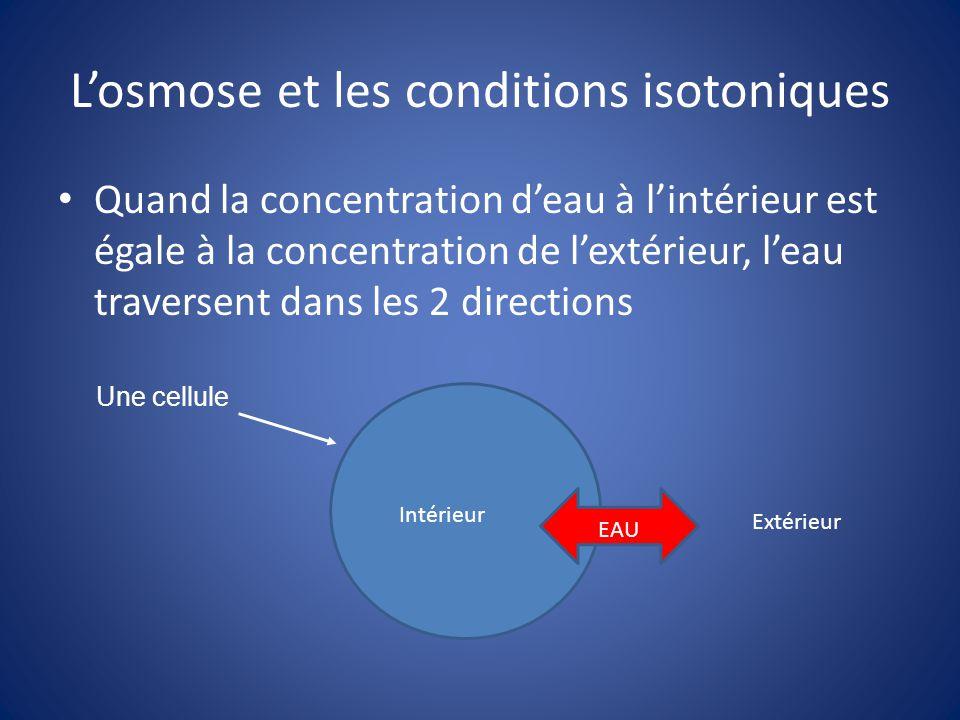 L'osmose et les conditions isotoniques