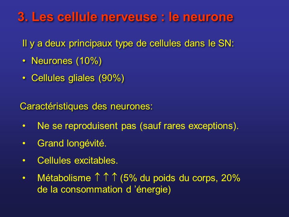 3. Les cellule nerveuse : le neurone