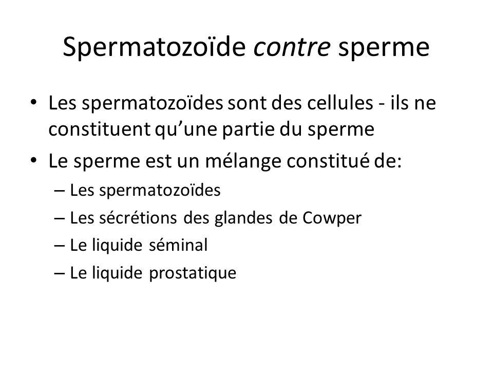 Spermatozoïde contre sperme
