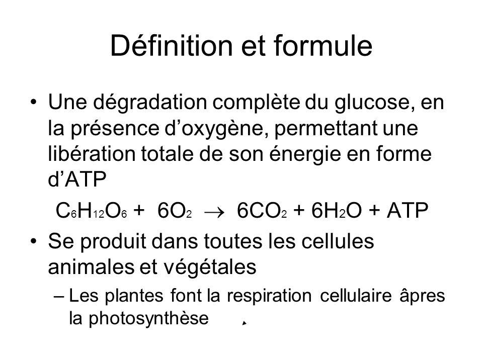 Définition et formule Une dégradation complète du glucose, en la présence d'oxygène, permettant une libération totale de son énergie en forme d'ATP.