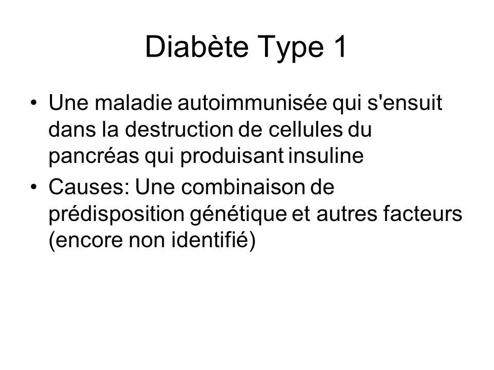 Diabète Type 1 Une maladie autoimmunisée qui s ensuit dans la destruction de cellules du pancréas qui produisant insuline.