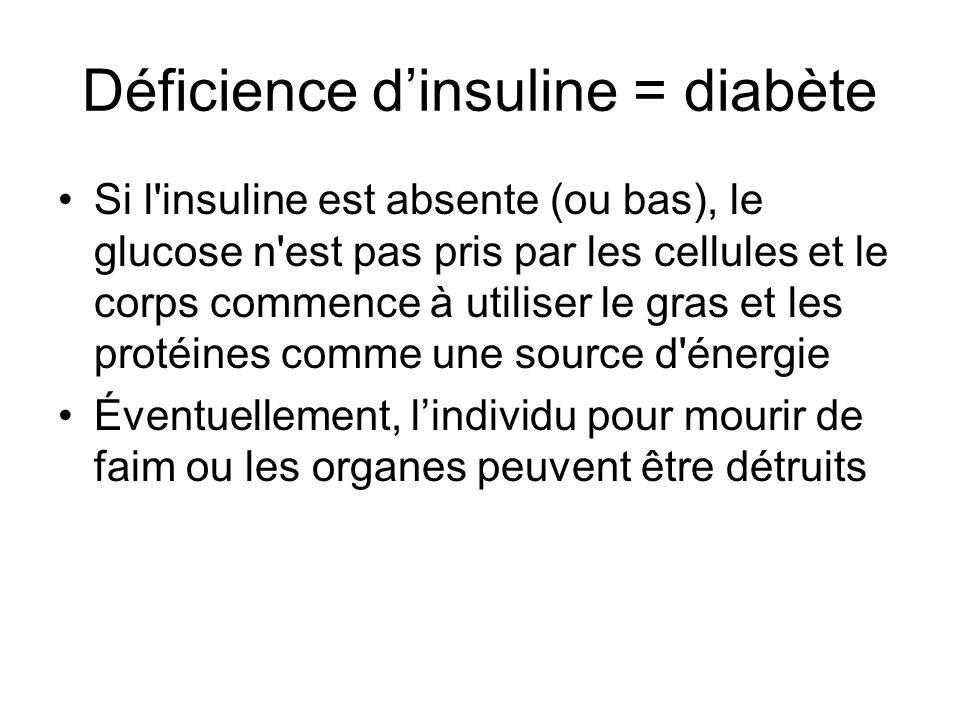 Déficience d'insuline = diabète