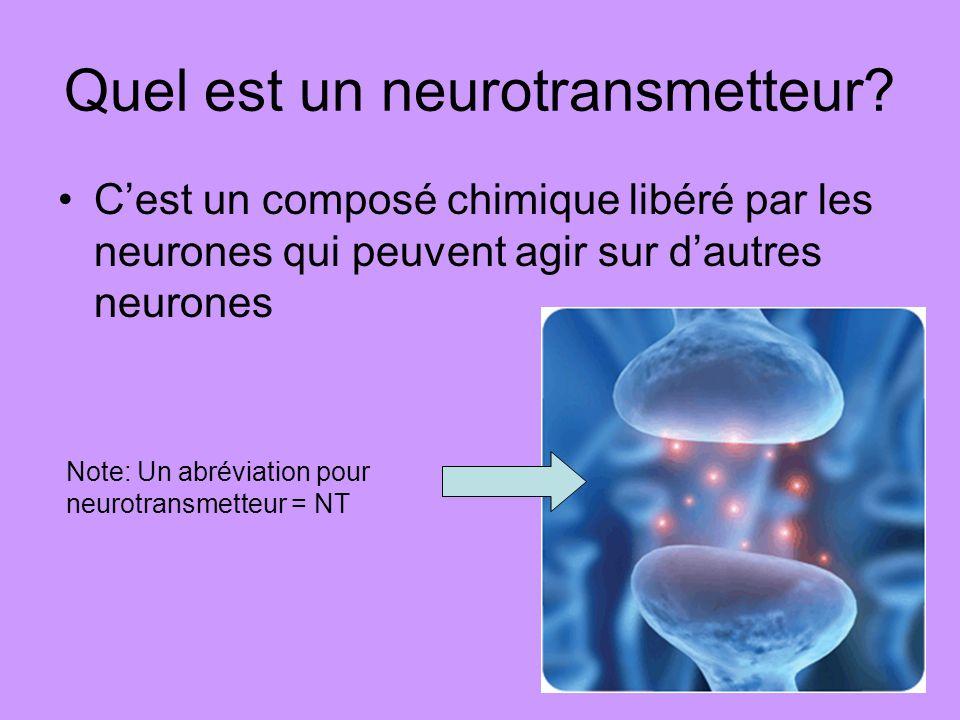 Quel est un neurotransmetteur