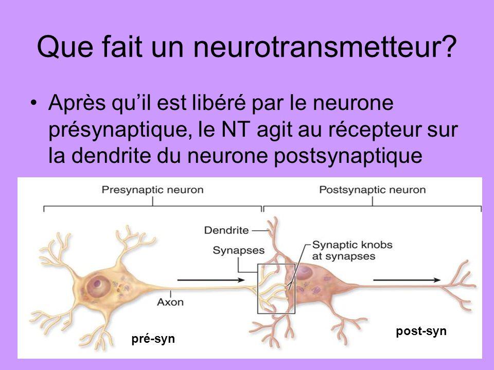 Que fait un neurotransmetteur