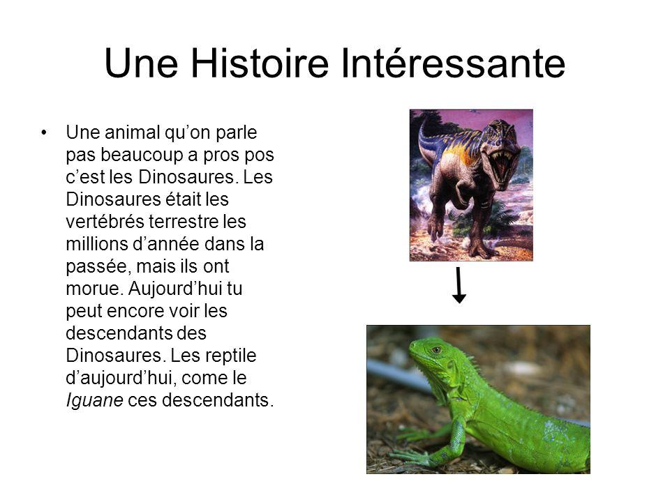 Une Histoire Intéressante