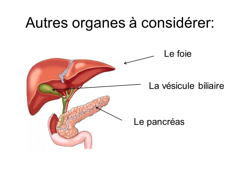 Autres organes à considérer: