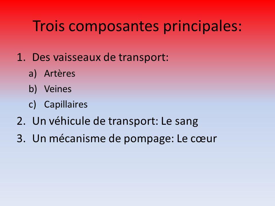 Trois composantes principales: